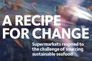 Sustainable seafood 3
