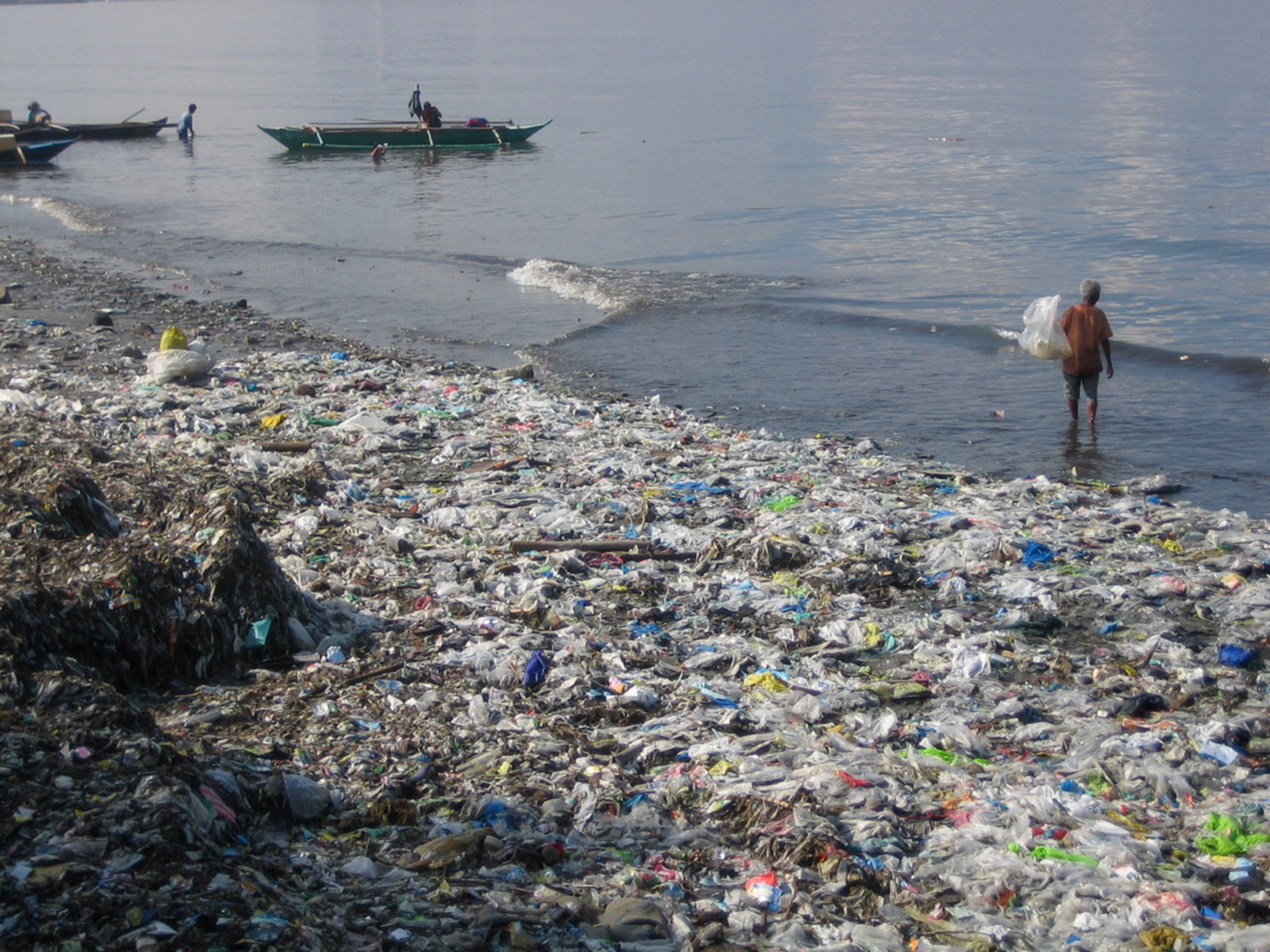 Essay for plastic pollution ocean