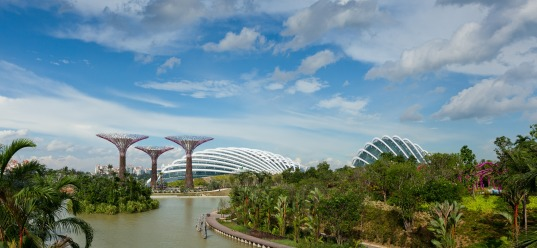 Singapore's Gardens by the Bay, photo by Craig Sheppard
