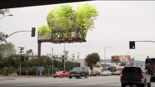 Urban Air's Kickstarter campaign would transform unsightly Los Angeles billboards into thriving above-ground bamboo gardens. (Photo Courtesy of Stephen Glassman)