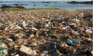 Plastic ocean debris