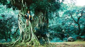 Brett Simpson high in a tree in the Costa Rican rainforest in support of etnies Buy a Shoe, Plant a Tree program