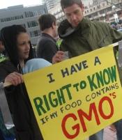No GMO pic