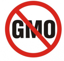 GMO (no)