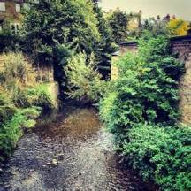 The river Quaggy has been restored to its former glory