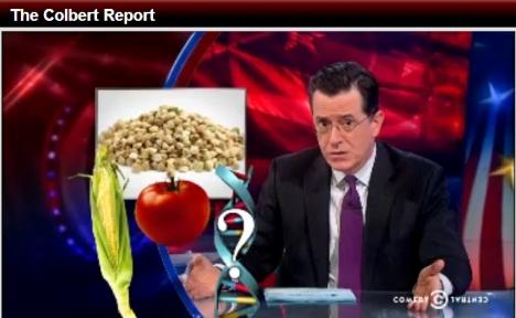 Colbert Report + GMOs