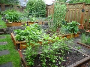Urban garden 2