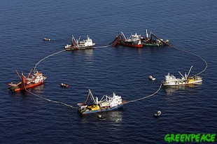 Foreign overfishing