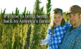 hemp legalization