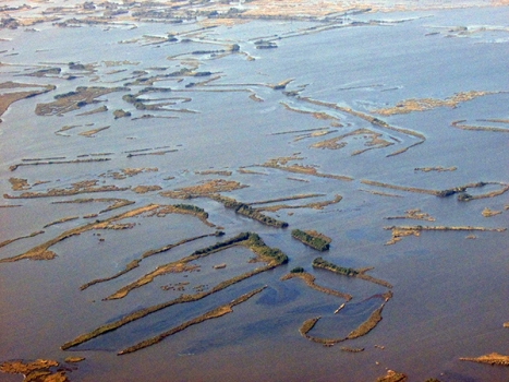 Louisiana wetlands under siege by the Gulf, photo by Kelly Wagner, courtesy of National Wildlife Federation