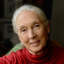 Jane Goodall says this book dispels the illusion about genetic engineering