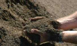 Compost, photo courtesy of Recology