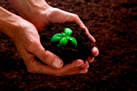 Rich compost will boost water retention and soil health, as well as increase crop nutrients, photo courtesy of Recology