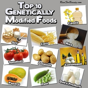 Genetically modified foods - Top 10