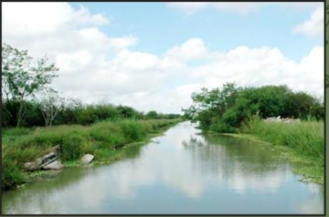 Irrigation in the Rio Grande Valley of South Texas